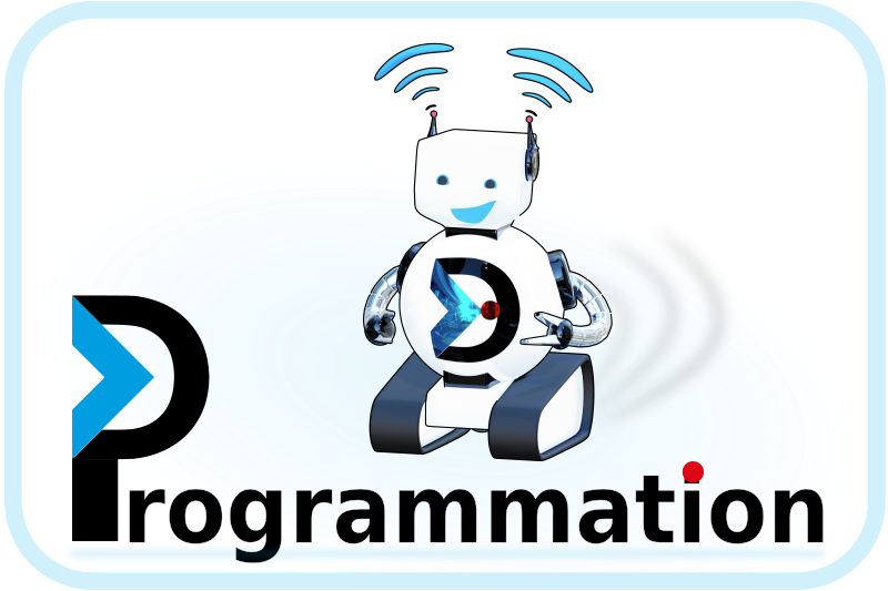 Programmation - logo DANE Nancy-Metz bluebot
